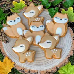 Hand Decorated Biscuits - Woodland Friends Party Pack (Pack of 10)