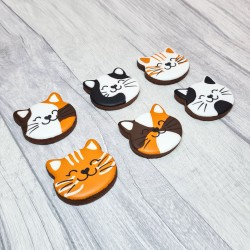 Cat Lover Hand-Iced Luxury Chocolate Biscuits (6 pieces)