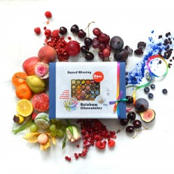 Nono Cocoa - 24 Rainbow - Vegan Superfood Chocolate Box