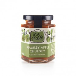 Bramley Apple Chutney - 3 pack