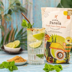 Panela Natural Sugar Alternative- Dried Sugar Cane Juice (1 Pack)