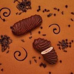 Premium Chocolate Crunch Bars (Box of 12)