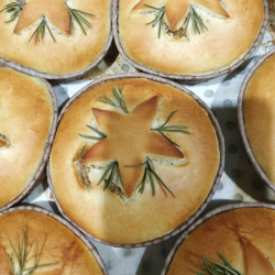 Lamb, Apricot & Chestnut Gourmet Pie