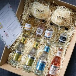 British Gin Tasting Set with Glasses & Mixers