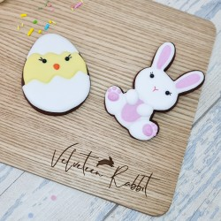Hand-Iced Easter Chocolate Biscuits Letterbox Gift Set, 2 Pieces