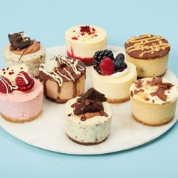 Mini Cheesecakes Variety Box