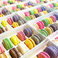 Gourmet Macaron Selection Box - Pick Your Own