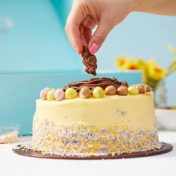 Decorating Kit - Easter Cake