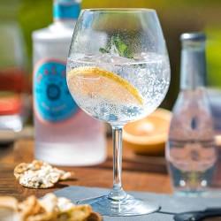 Plastic Garden Gin Glass