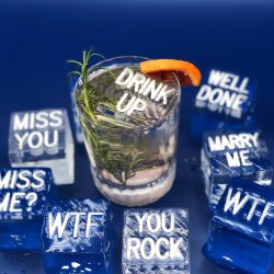 Message Ice Cubes (Box of 20) - Choose Message