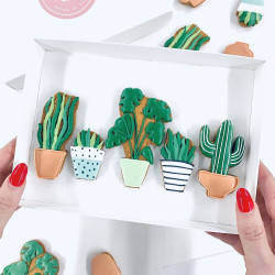 House Plant Letterbox Cookies