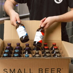 Small Beer Mixed Case - Lower Alcohol Beer (24 x 350ml)