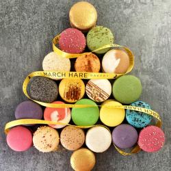 Gourmet Christmas Macarons