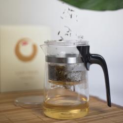 Lazy Pour, Glass Teapot 500ml