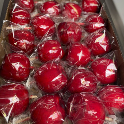 Traditional Red Toffee Apple - Box of 20 Apples