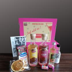 Cosmopolitan Cocktail in a Box Ingredient Set (Serves 4)