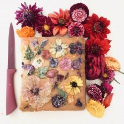 Floral Drizzle Sponge Squares (6 Pieces)
