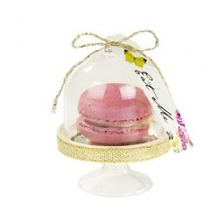 Macaron in a Dome Favour