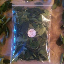 Spice Kitchen Homegrown Curry Leaves - Dried