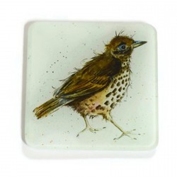 Thrush Glass Coasters - Set of 2