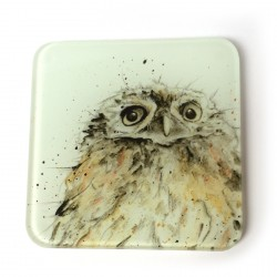 Owl Glass Coasters (set of 2)