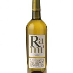 6 Bottles Falanghina Rami DOC Organic White Wine