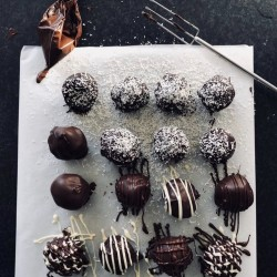 Chocolate Covered Coconut Rounds
