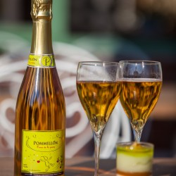 Apple & Vanilla Sparkling Drink - Pommillon