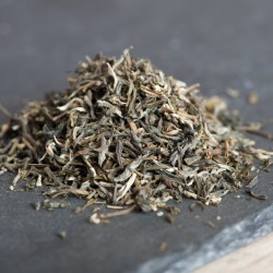 Yunnan Green Tea - 3 Pack