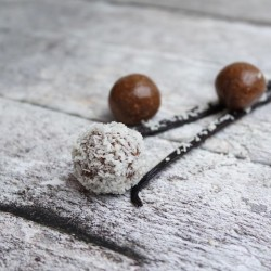 Raw Vanilla Health Balls