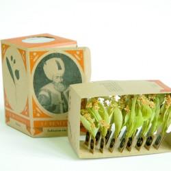 Lime Tree Box