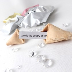 Wedding Quotation Wedding Fortune Cookies