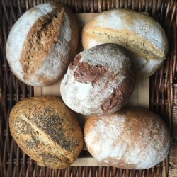 5 Gluten Free Mixed Sourdough Loaves - Limited Edition