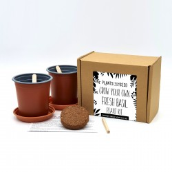Grow Your Own Basil Plant Kit