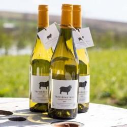 Constantine Dry White Wine 2014