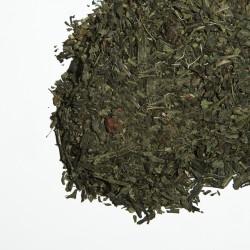 Strawberry & Spears Green Tea