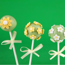 Flower Cake Pops (Set of 10)