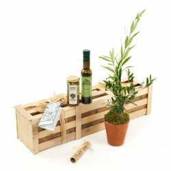Extra Olive Enthusiasts Kit - Olive Tree Gift
