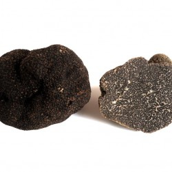 Fresh Black Summer Truffle 50g
