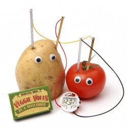 Veggie Volts in a Matchbox Gift