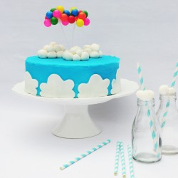 Up Up and Away Cake Kit