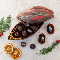 Vegan Chocolate Truffle Selection in Edible Cocoa Pod