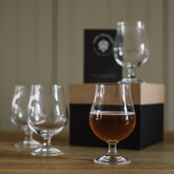 Craft Beer Tasting Glass Set