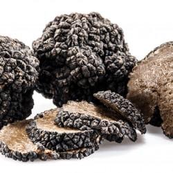 Black Summer Truffle (Tuber Aestivum) 100g