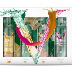 V Gallery Minis Gift Set