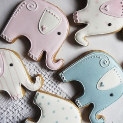 10 Elephant Baby Shower Cookies