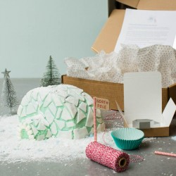 The Igloo Cake Kit