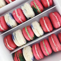 Multi Flavoured Vegan Macarons Box
