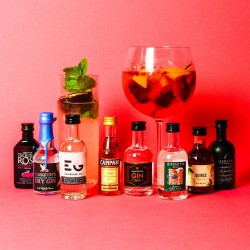 Premium Gin And Liqueur Tasting Set