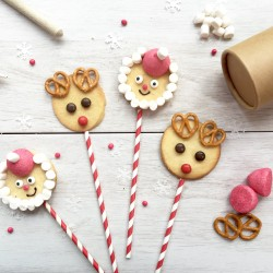 Festive Faces Biscuit Kit